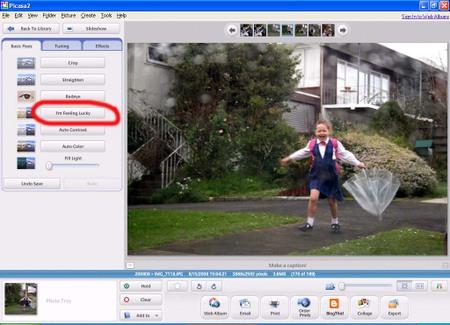 Picasa_screen_shot
